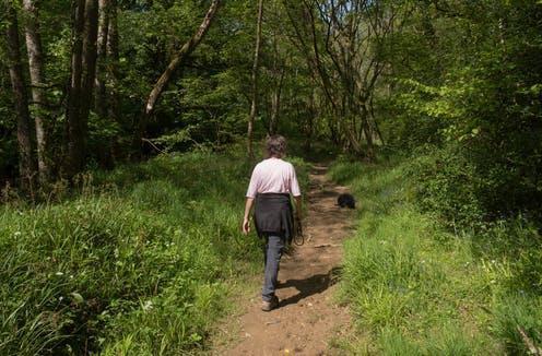 Should A Doctor Prescribe A Walk In The Park?